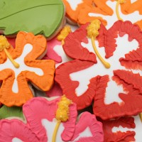 Hibiscus Cookie Close-up 3