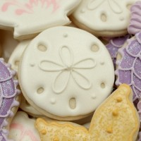 Sand Dollar Cookie