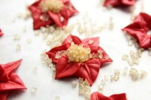 Royal Icing Poinsettias 12