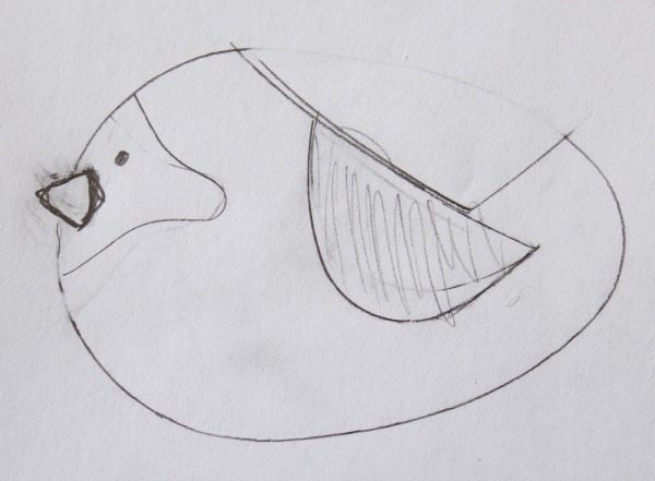 Simple Cardinal Sketch